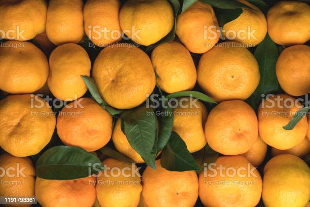 Bright juicy tangerines or mandarins