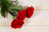 istock bright large roses and petals lie on a light wooden background 1284128126
