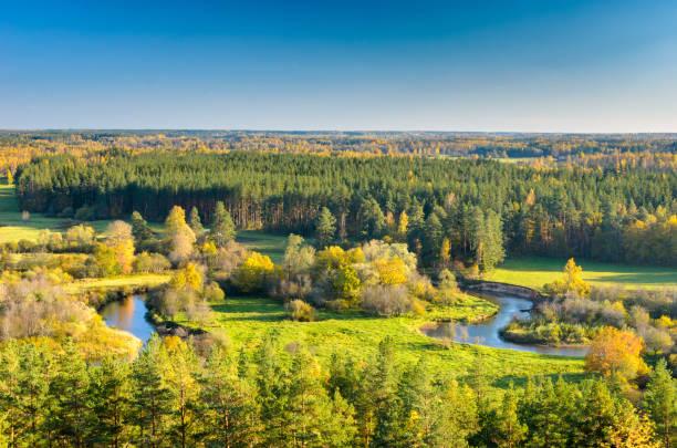 parlak bir doğal peyzaj sonbahar sezonu. - estonya stok fotoğraflar ve resimler