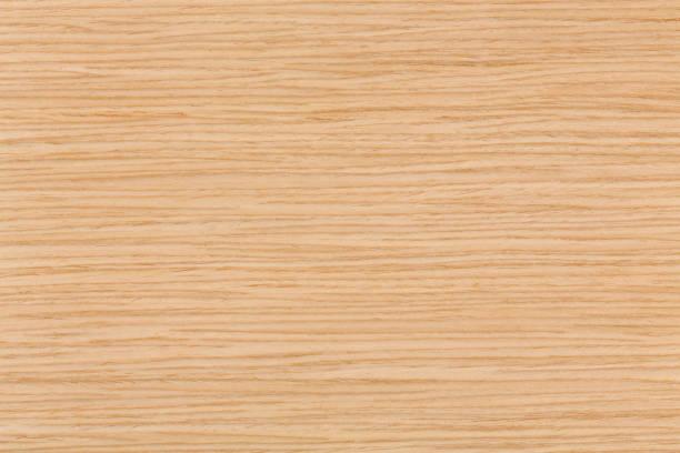 helle eiche natürliche holzstruktur auf makro - eichenholz stock-fotos und bilder