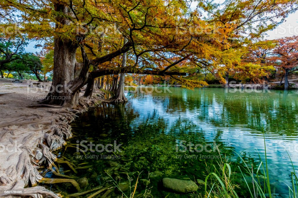 Bright Orange Leaves and Clear Water at Garner State Park, Texas stock photo