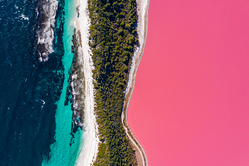 Bright pink lake with white sand shoreline and blue ocean. Multi coloured nature scene