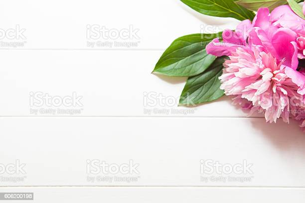 Bright pink peonies on white wooden background picture id606200198?b=1&k=6&m=606200198&s=612x612&h=2zwrixm6gqmrdzwsne0ferpr6rkmsxcmm5kq2kbtzrg=