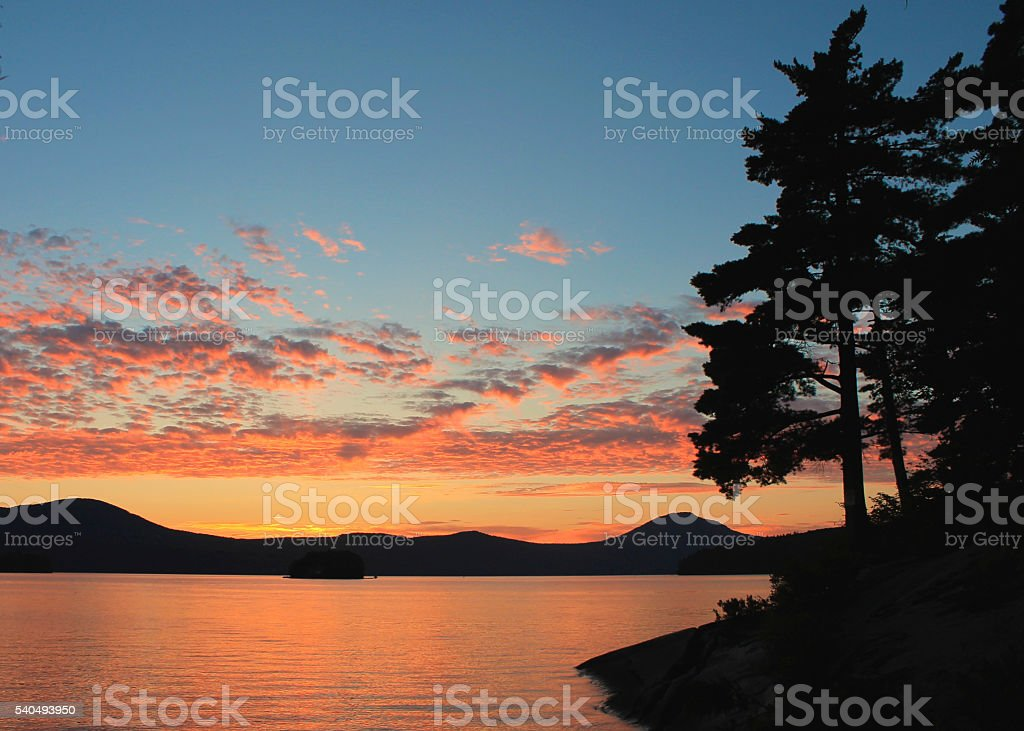 Bright pink sunset on lake with pine trees stock photo