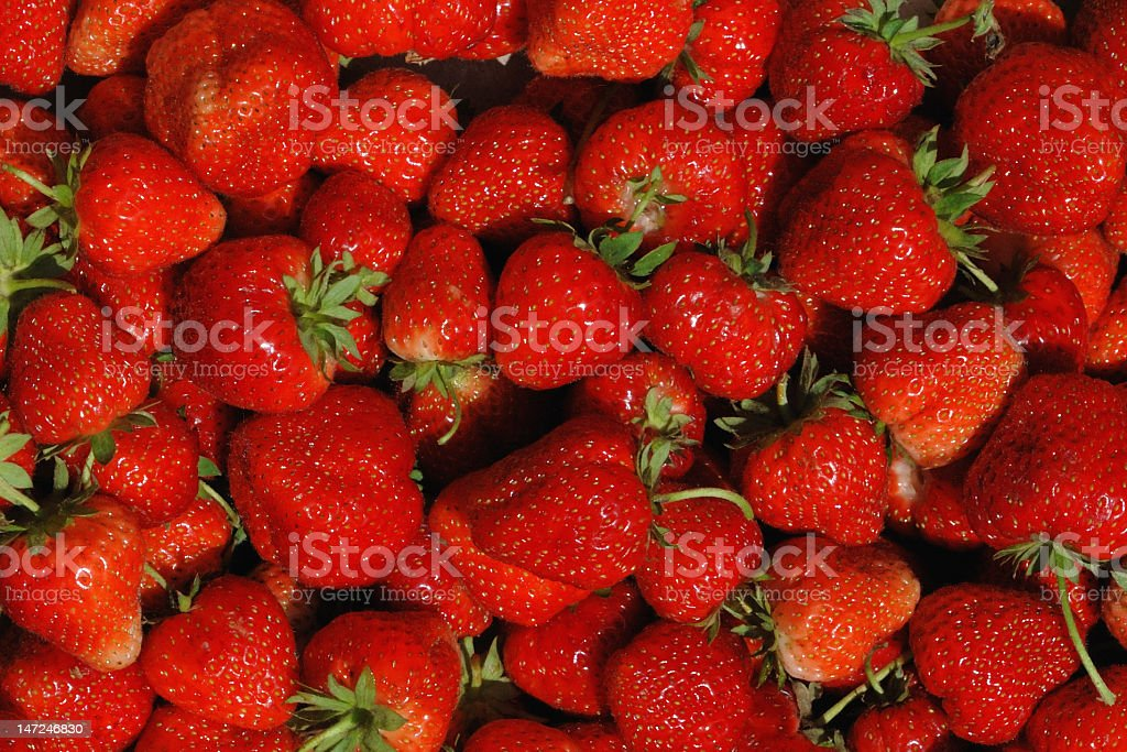 Bright Red Freshly Picked Strawberries royalty-free stock photo