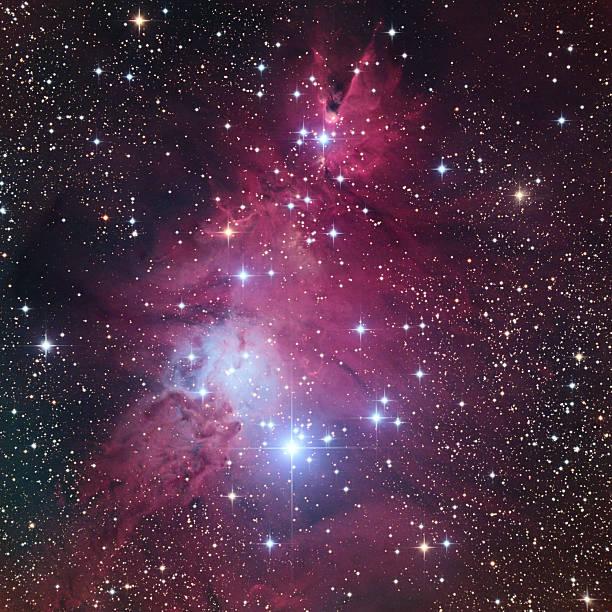 der ngc 2264 helle rote nebel und cluster - sternhaufen stock-fotos und bilder