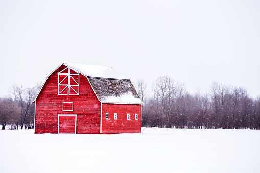 Bright red with hayloft in winter landscape