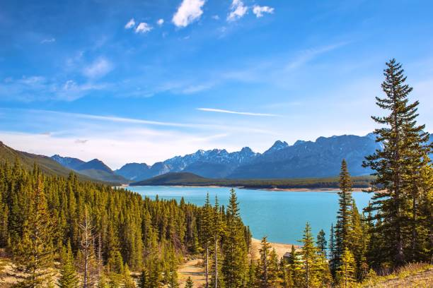 Bright Sky Over Kananaskis Lake A vibrant blue sky over Kananaskis Lake in the springtime. kananaskis country stock pictures, royalty-free photos & images