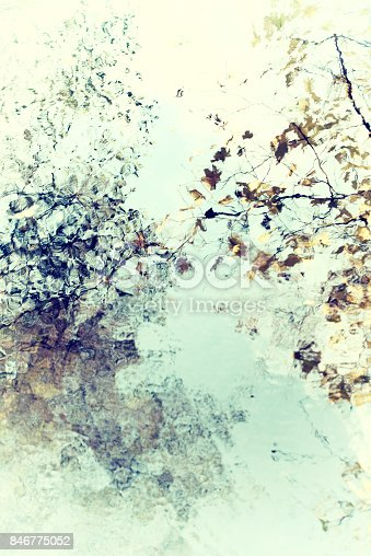 istock Bright soft abstract autumn leaves and branches with water reflection 846775052