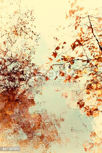 istock Bright soft abstract autumn leaves and branches with water reflection 847767320