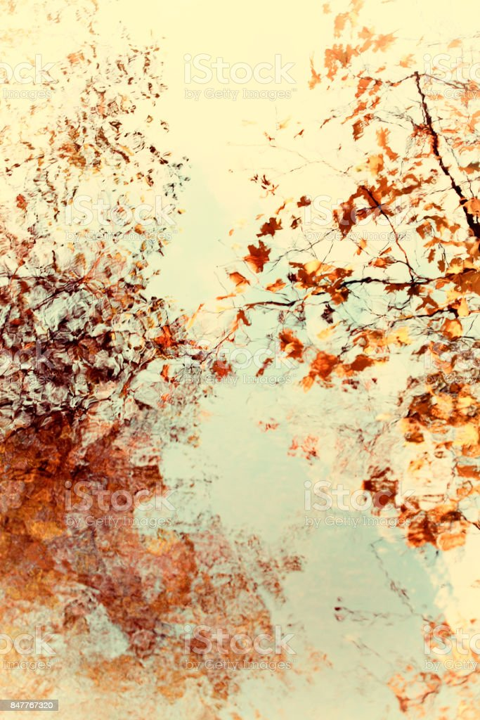 Bright soft abstract autumn leaves and branches with water reflection stock photo