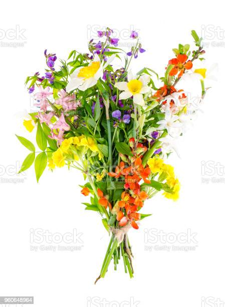 Bright spring flowers isolated on white background picture id960648964?b=1&k=6&m=960648964&s=612x612&h=o6fxh6rv6zylfdfffpxwsgmorosh8l8z luuajlvipq=