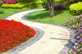 Garden with colorful snapdragon flowers and footpath.