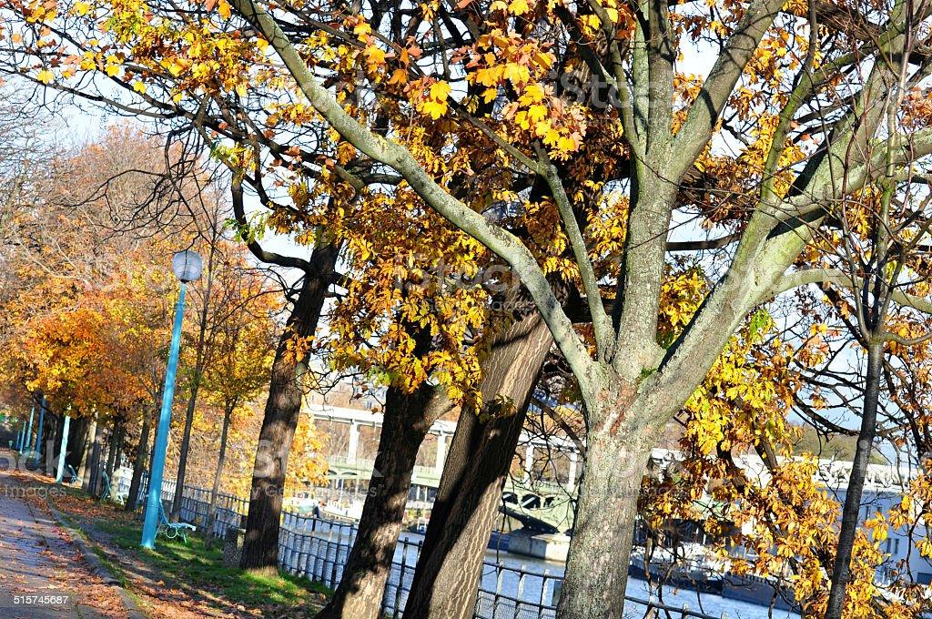 Bright sunny autumn day stock photo