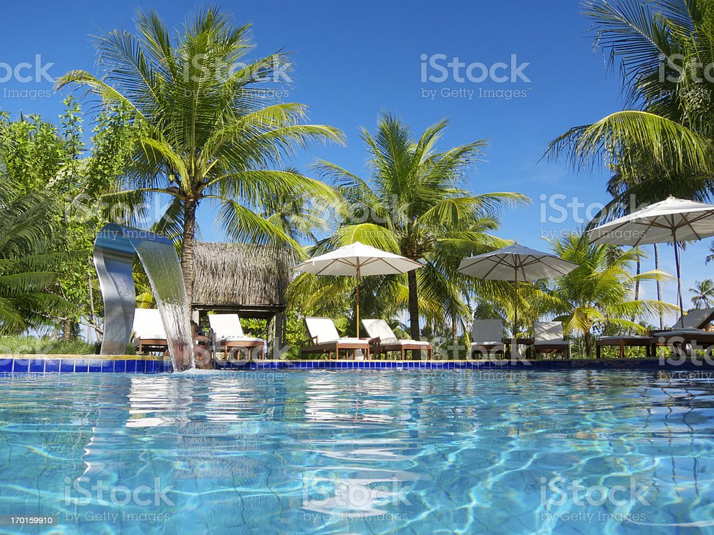 Bright tropical swimming pool lined with deck chairs and palm trees