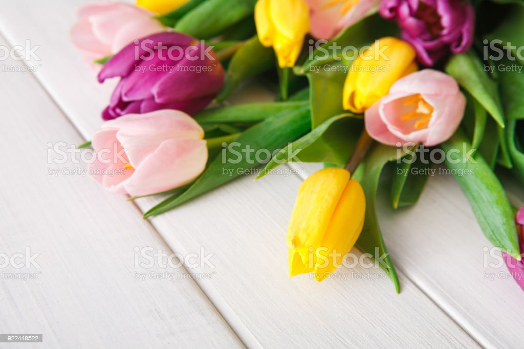Bright tulips bouquet on white wood background, copy space stock photo