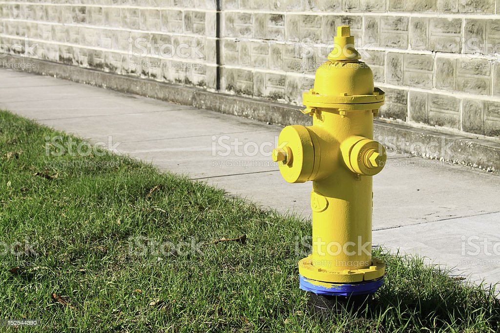 Bright Yellow Fire Hydrant stock photo