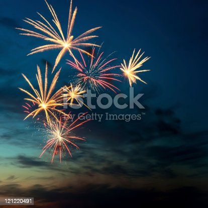 istock Brightly colorful fireworks  in the night sky 121220491