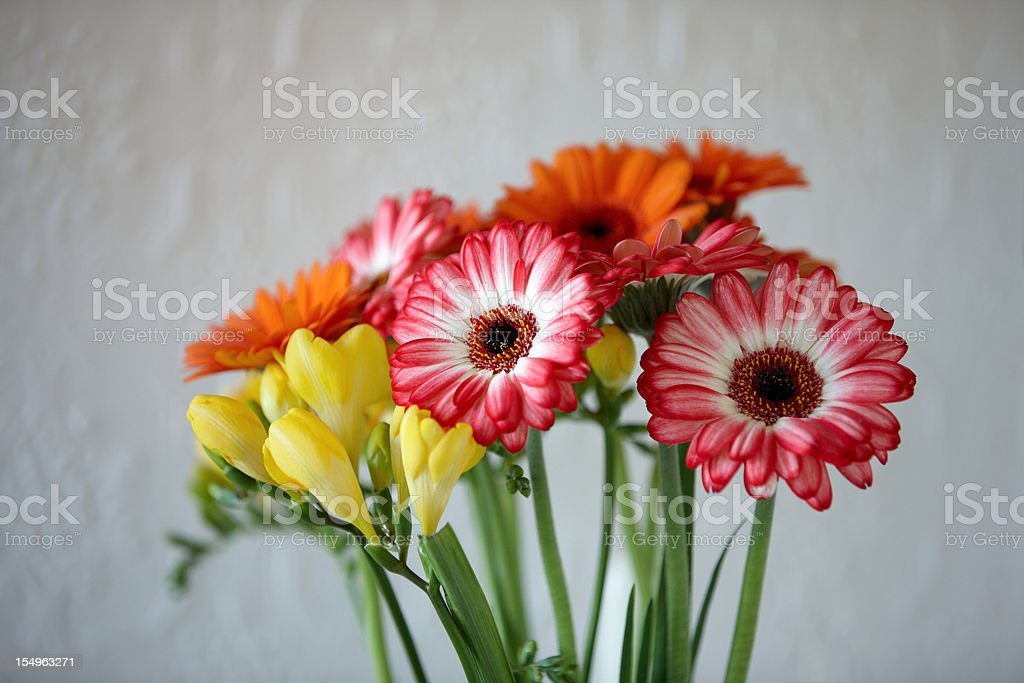 Brightly coloured flowers in vase royalty-free stock photo