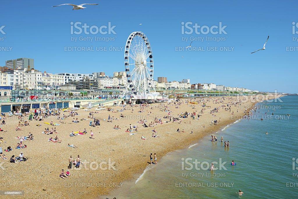 Brighton, East Sussex, UK royalty-free stock photo