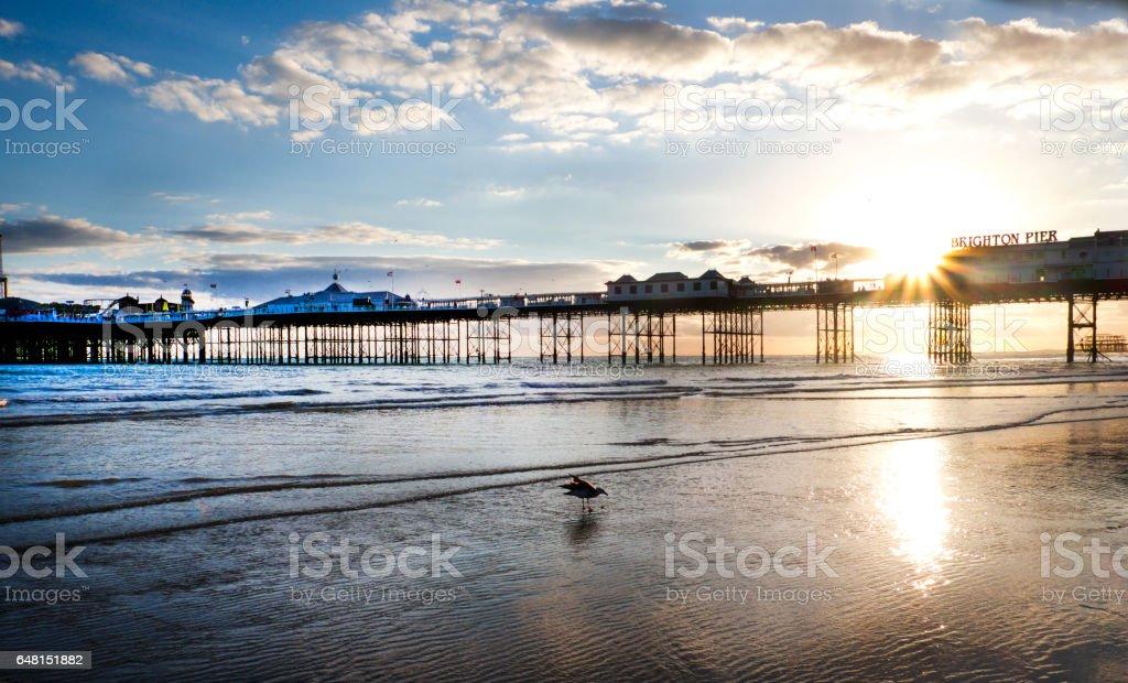 Brighton pier at sunset stock photo