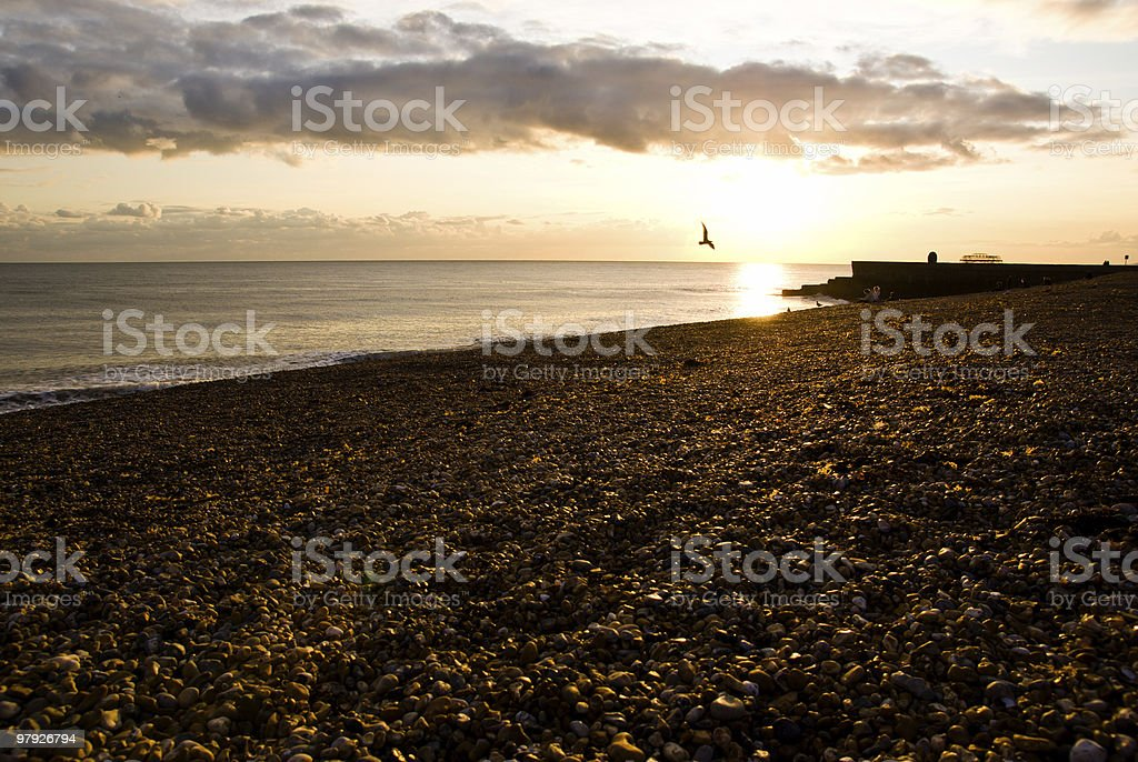 Brighton sunset royalty-free stock photo