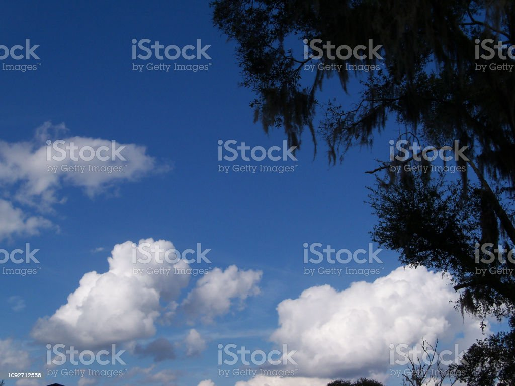 Brilliant blue sky and white clouds stock photo
