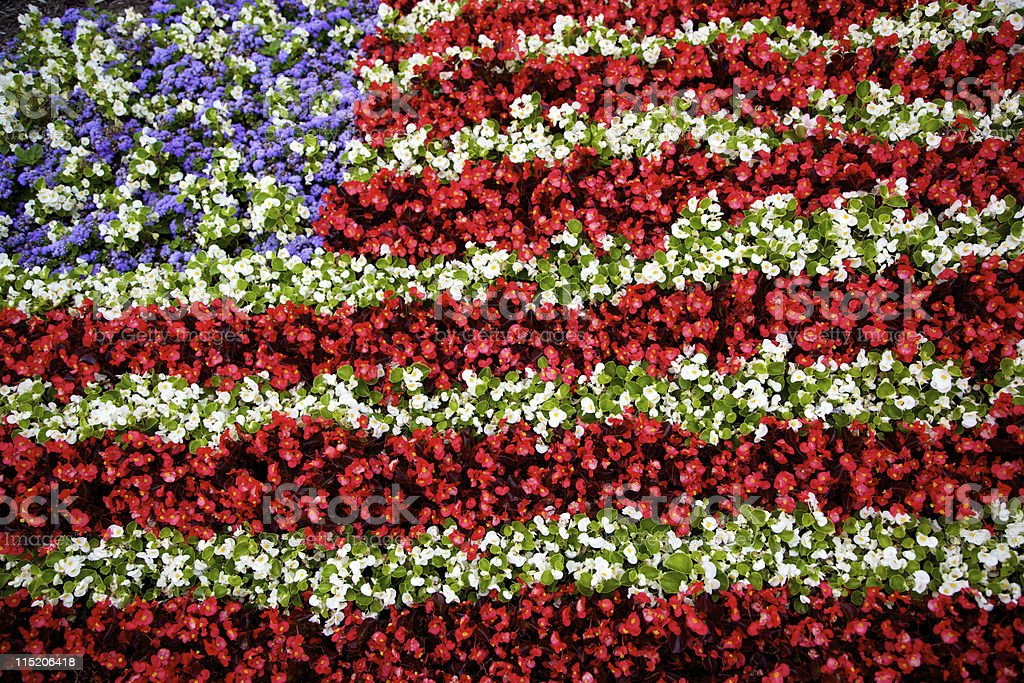 brilliant flower flag design stock photo