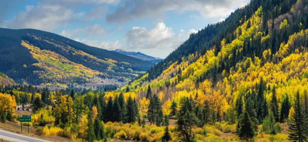 Brilliant Golden Autumn Aspen Trees in Vail Colorado Brilliant Golden Autumn Aspen Trees in Vail Colorado vail colorado stock pictures, royalty-free photos & images