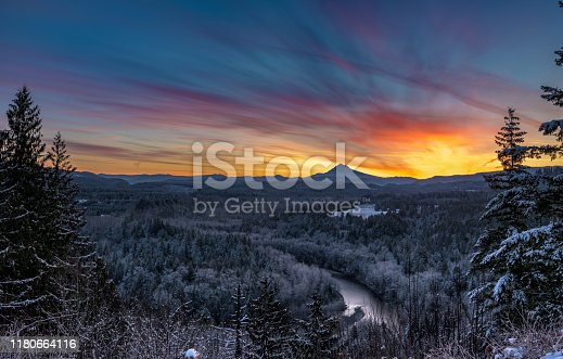 Brilliant Sunrise Below Muted Oregon Forest in winter