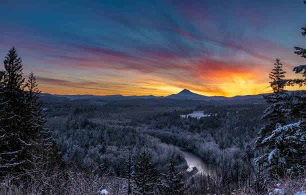 Brilliant Sunrise Below Muted Forest Brilliant Sunrise Below Muted Oregon Forest in winter mt hood stock pictures, royalty-free photos & images