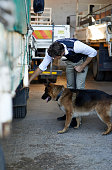 istock Bring in the canine division 508215709