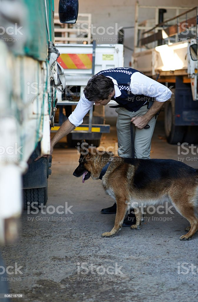 Bring in the canine division stock photo