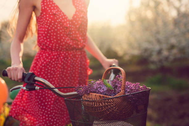 Bringing Some Of The Spring Freshness And Beauty Unrecognizable, young woman riding a bicycle with basket of lilac through the orchard full of trees in bloom. sun shining through dresses stock pictures, royalty-free photos & images