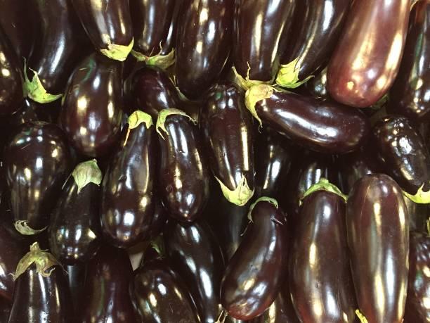 Brinjals or Eggplant stock photo