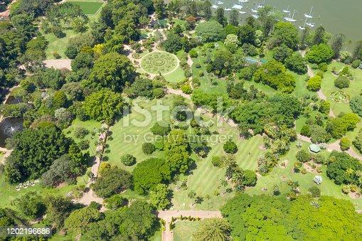 Brisbane City Botanic Gardens with Marina, Queensland, Australia. Converted from RAW.