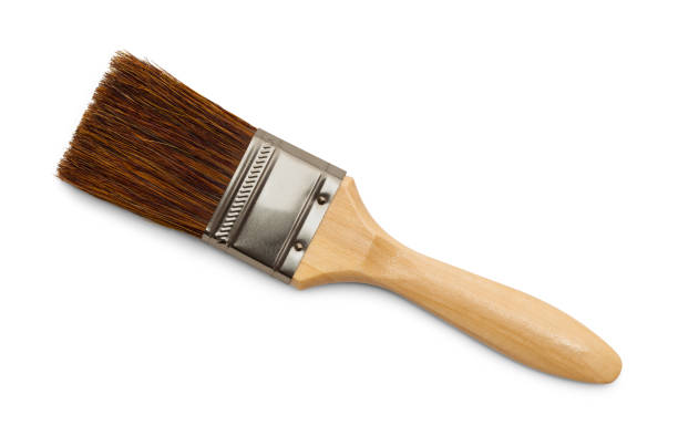 Bristle Paint Brush Horse Hair Bristle Paint Brush Isolated on White Background. paintbrush stock pictures, royalty-free photos & images