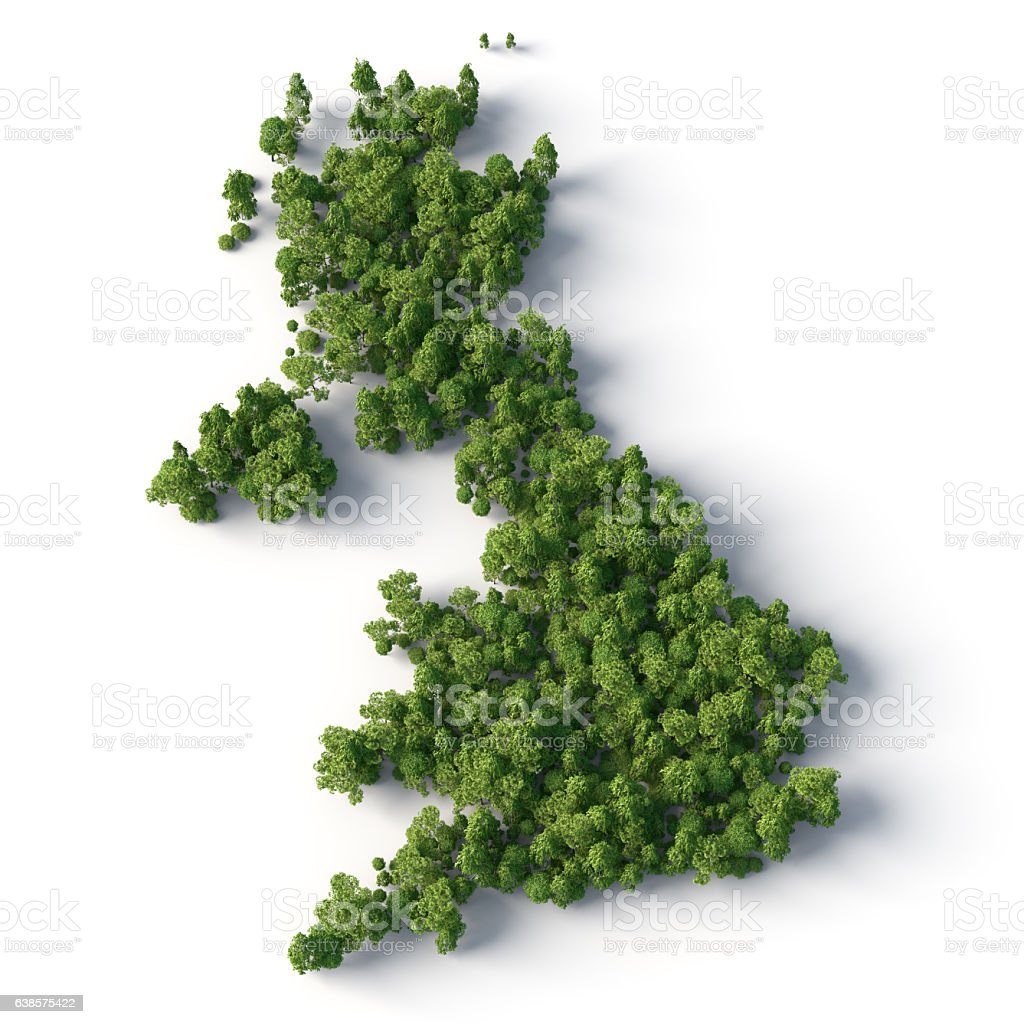 britain forest stock photo