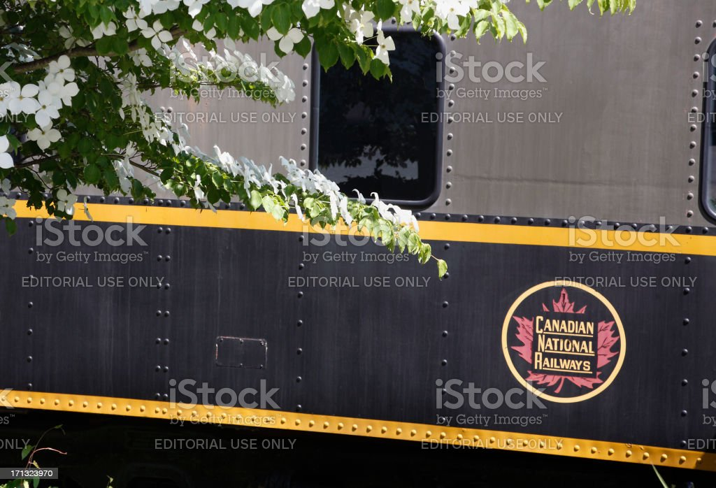 British Columbia Provincial Flower With Historic Canadian National Train. stock photo