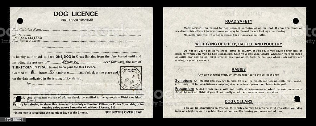 British dog licence from 1986 stock photo