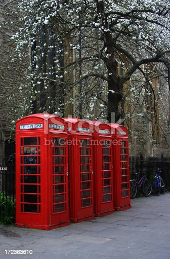 a row of iconic red English telephone booths under a blooming cherry tree in the University of Cambridge