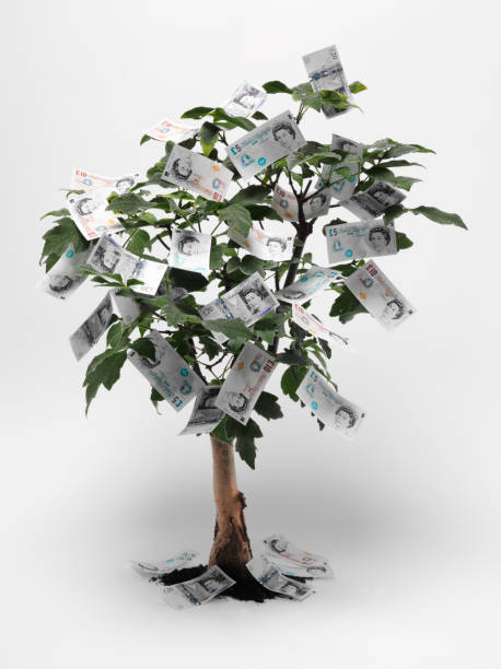 """British Pound Money Tree """"Five,ten and twenty pound notes growing on a tree.Click on the link below to see more of my business images."""" money tree stock pictures, royalty-free photos & images"""