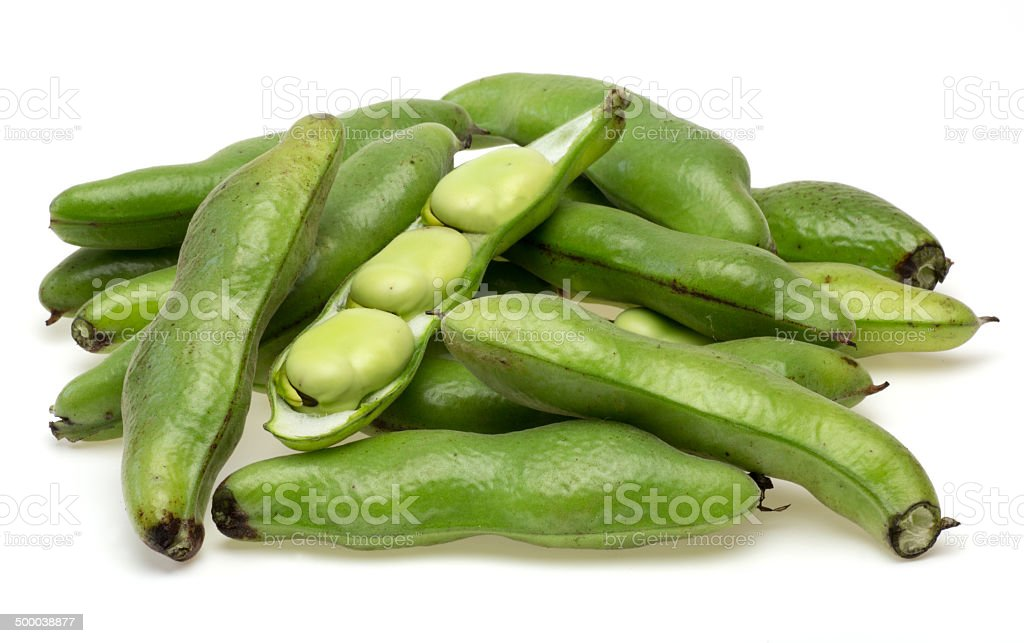 Broad bean in a white background stock photo