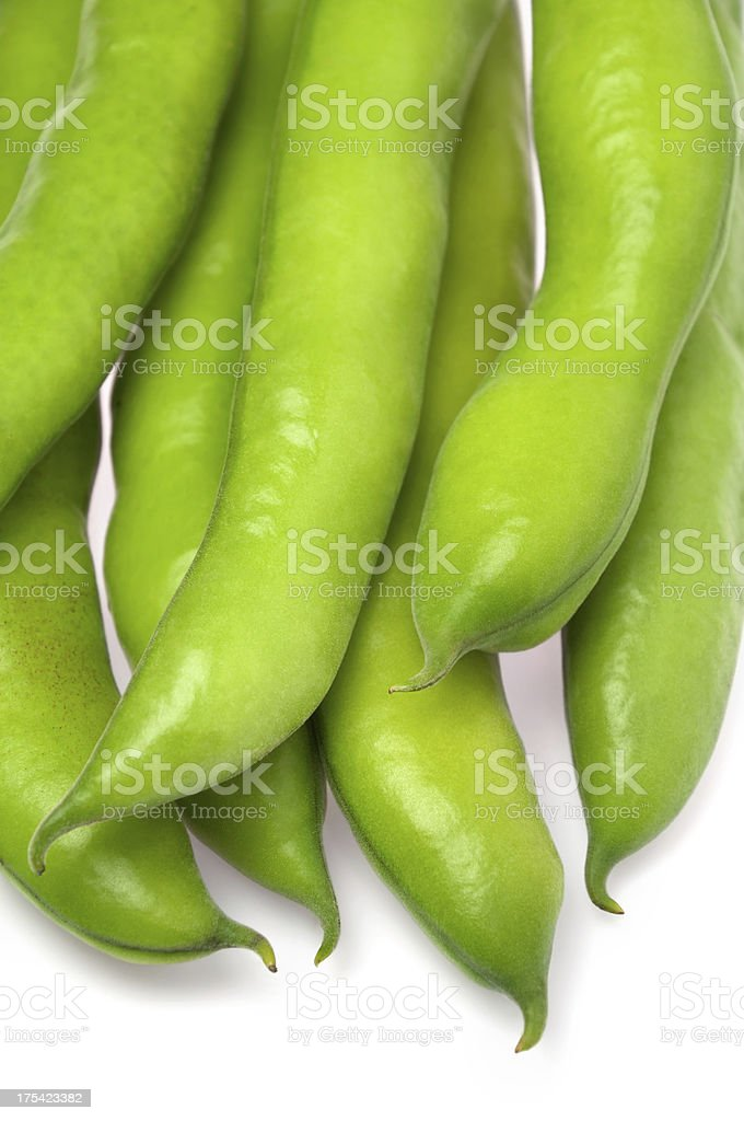 Broad Bean royalty-free stock photo