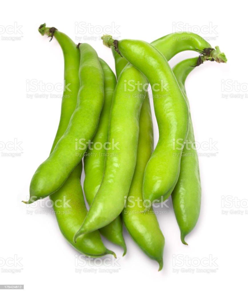 Broad Bean stock photo