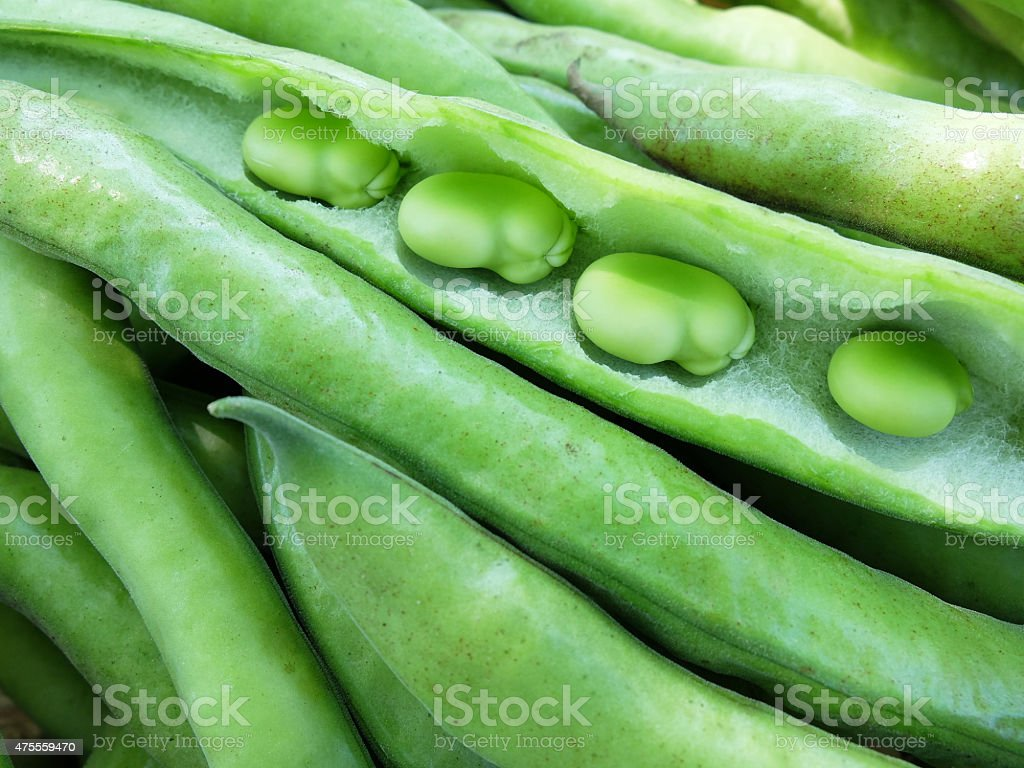 Broad Beans and Seeds. stock photo