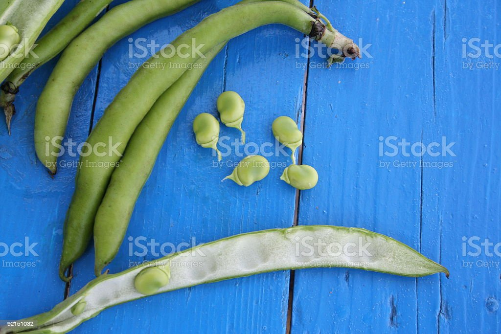 Broad Fava Beans on Blue Wood Background royalty-free stock photo