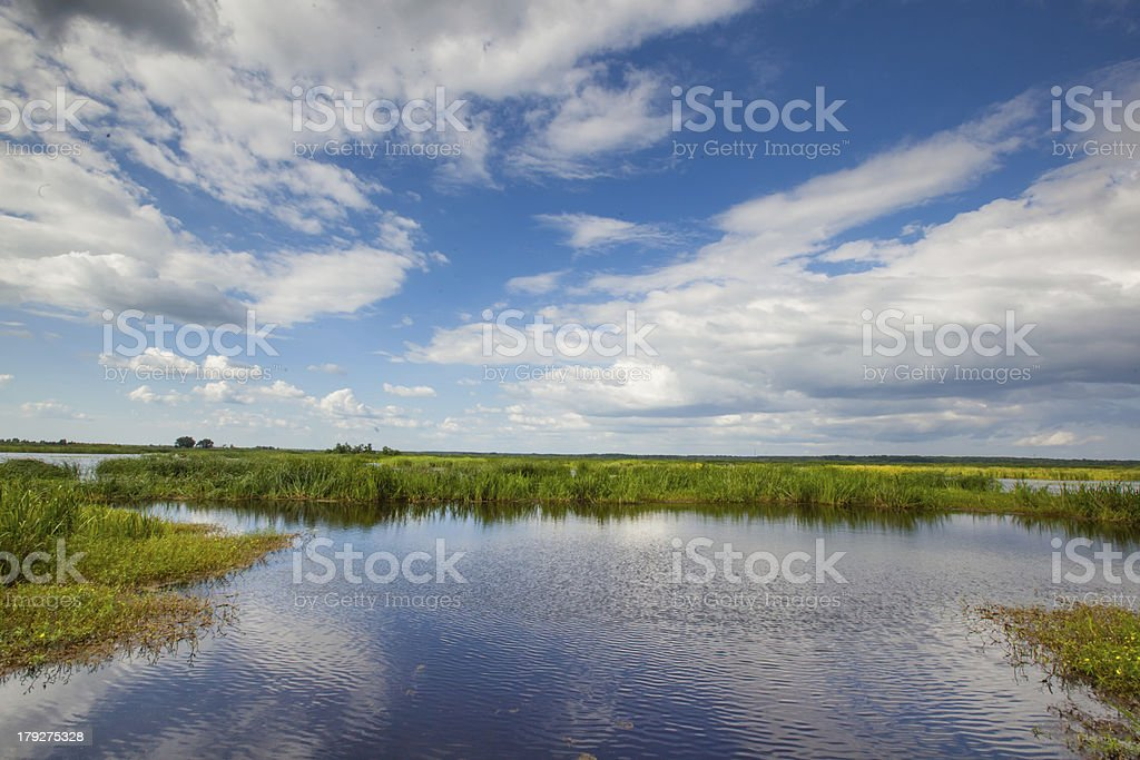 Broad Marsh stock photo