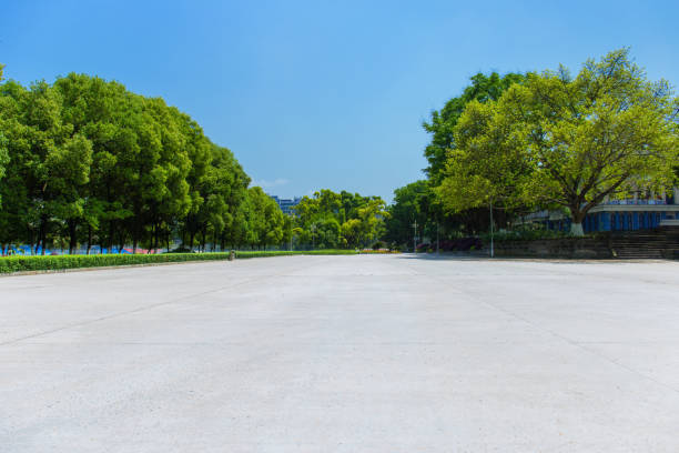 Broad square and dense woods in the sun, outdoor park Broad square and dense woods in the sun, outdoor park parking lot stock pictures, royalty-free photos & images