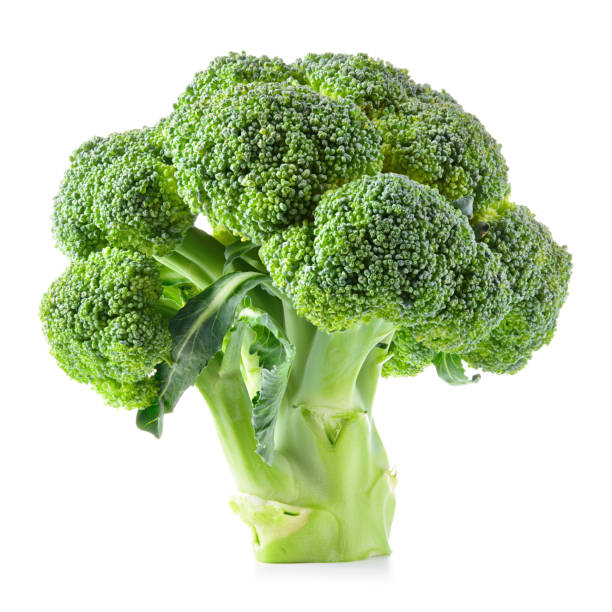 Broccoli. Broccoli isolated on white. Broccoli. Broccoli isolated on white. broccoli stock pictures, royalty-free photos & images